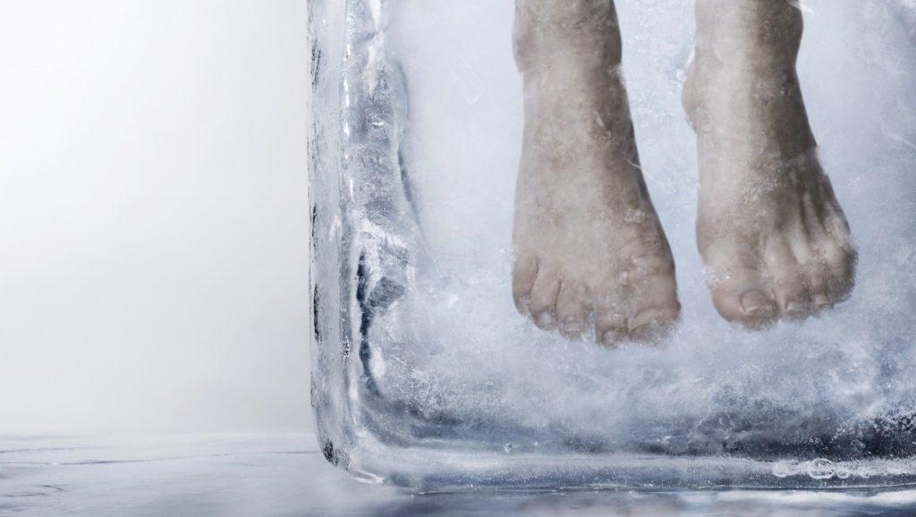 ウォルトディズニー 冷凍保存